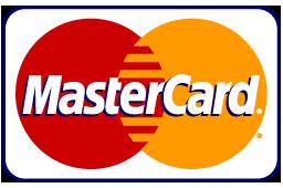 Visa_payment